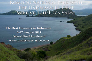 click for More information about the Komodo Trip in August 2013