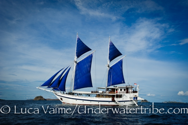 Ombak Biru or Komodo Dancer Liveaboard